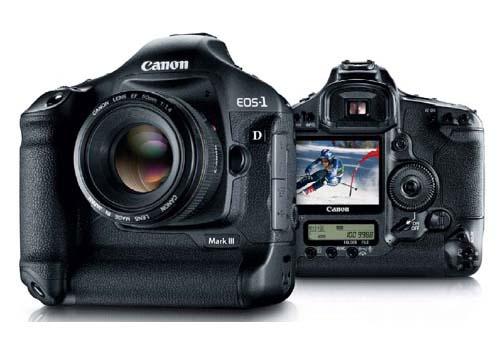 Какой зеркальный фотоаппарат лучше купить?