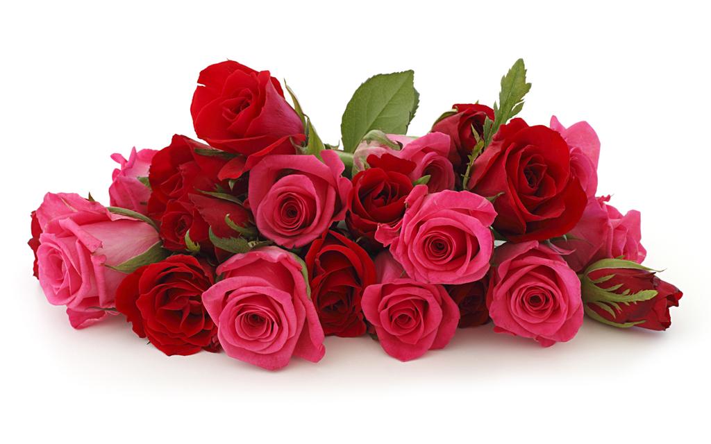 Картинки цветы для одноклассников 3