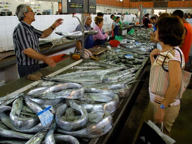 оптовый рыболовный рынок в самаре