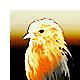 http://s3.hostingkartinok.com/uploads/images/2014/04/a867235fc10f700a01c225903159bf4d.png