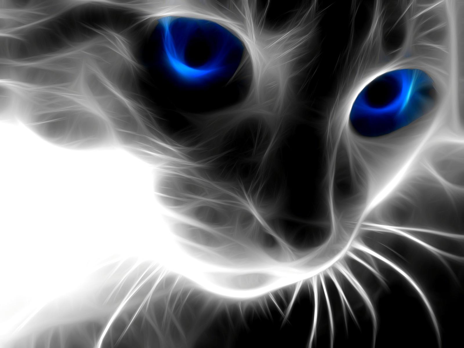 красивые картинки для вэка глубокую миску