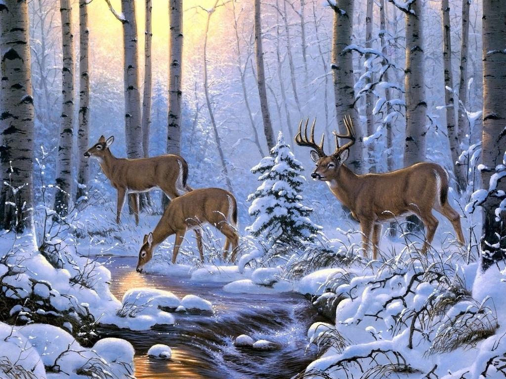 Анимационные картинки с природой и животными