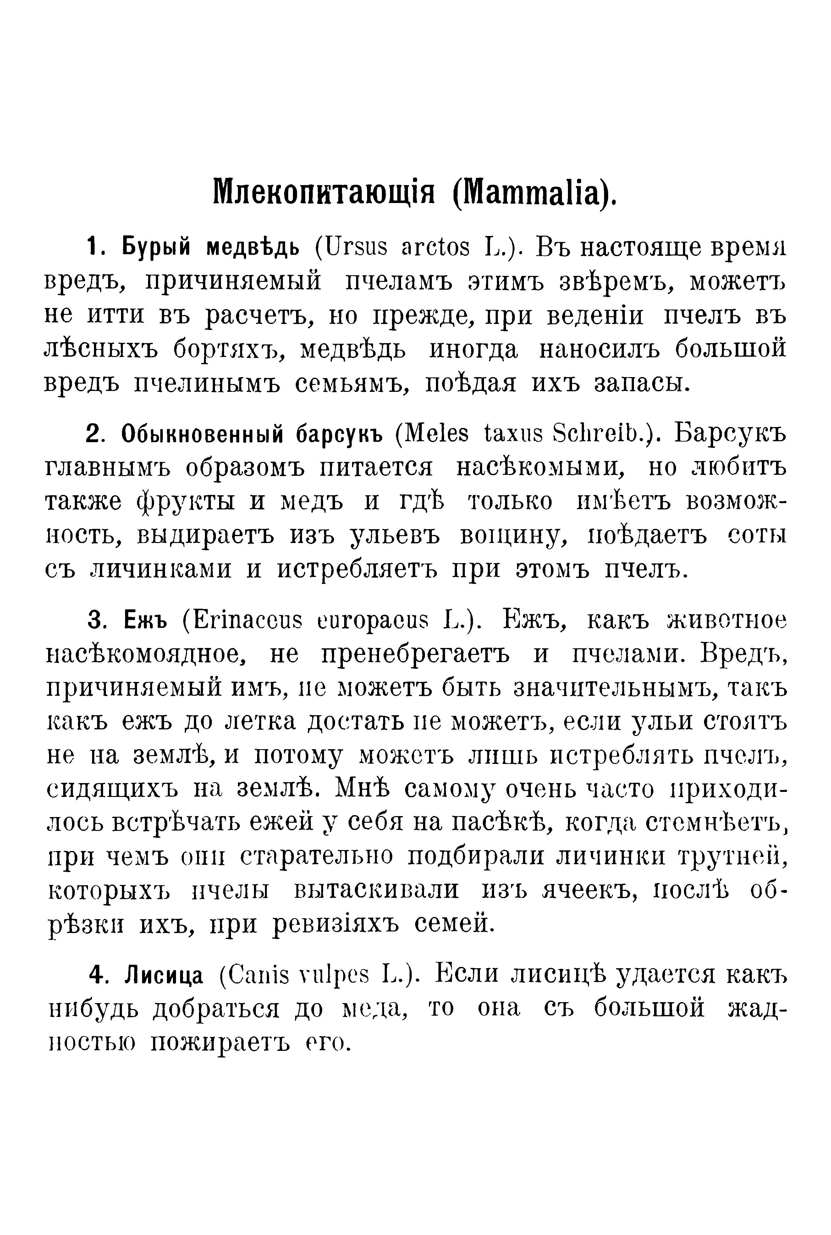 Враги пчёл - А.Г.Белявский 1.jpg